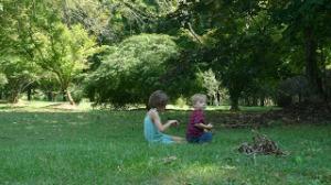 picnic1